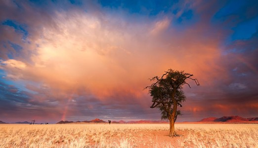 Most Beautiful Photographs To Reveal The Beautiful Namibian Desert-24