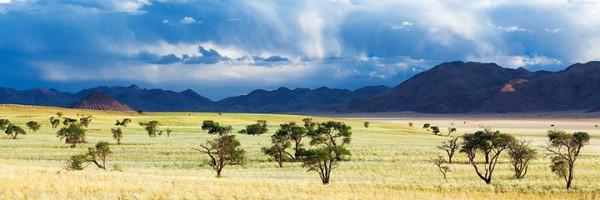 Most Beautiful Photographs To Reveal The Beautiful Namibian Desert-28