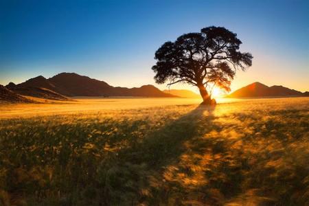 Most Beautiful Photographs To Reveal The Beautiful Namibian Desert-39