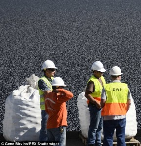 See How 96MILLION Plastic Balls Would Protect LA From Drought-6
