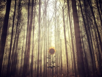 Stunning Surreal Images Of Mississippi Made Only Using iPhone-2
