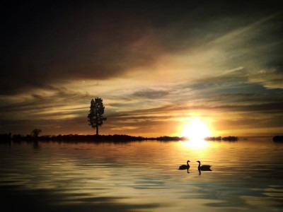 Stunning Surreal Images Of Mississippi Made Only Using iPhone-7