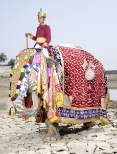 20 Elephants Decorated In Thousand Colors For The Jaipur Elephant Festival-16