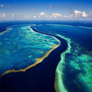 Towering Cliffs And Colorful Reefs Mesmerize You With Beauty Of Australian Coast-39