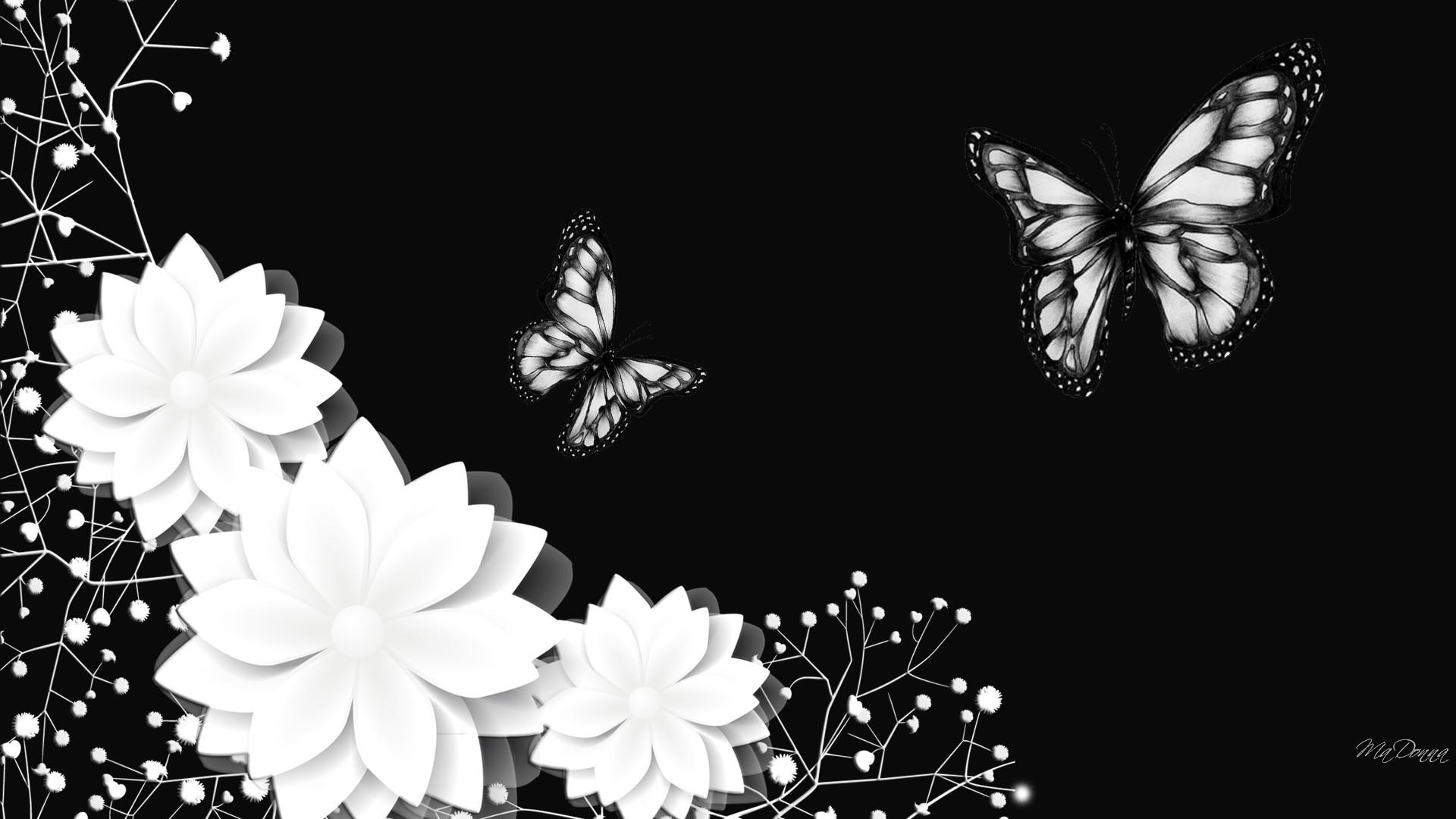 70 HD Black And White Wallpapers For Free Download ...