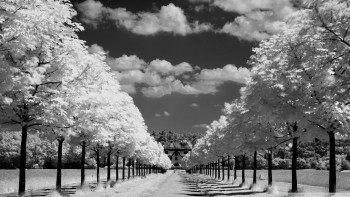Cool Black And White Wallpapers Resolution 1920x1080-Desktop Backgrounds-46