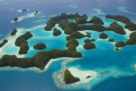 Palau islands-Discover This Gigantic Marine Sanctuary Where Wildlife Is Flourishing Away From Human Activity-14