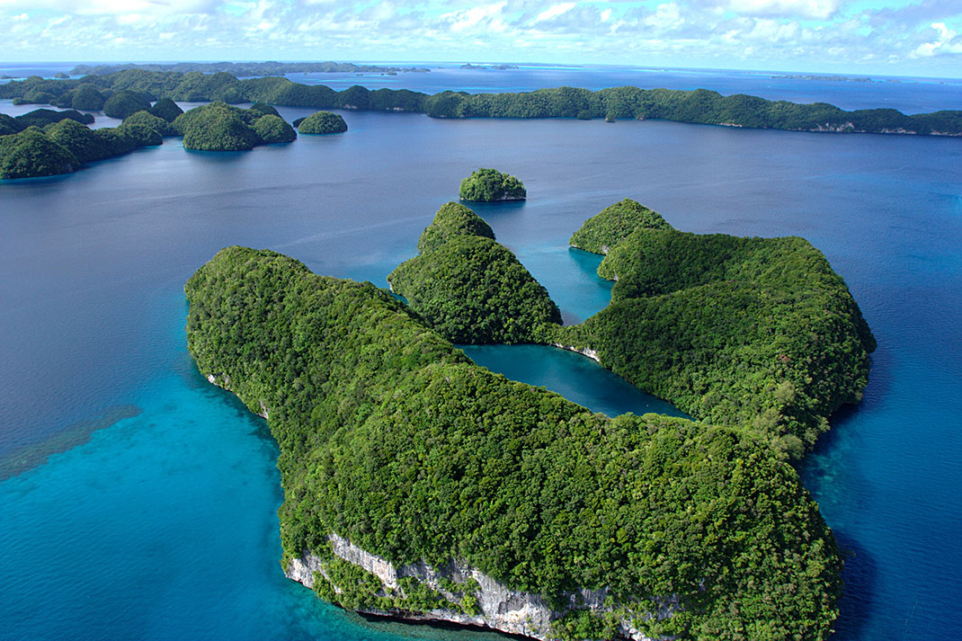 Palau islands-Discover This Gigantic Marine Sanctuary Where Wildlife Is Flourishing Away From Human Activity-17