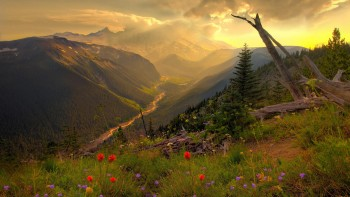 Landscape wallpaper 1