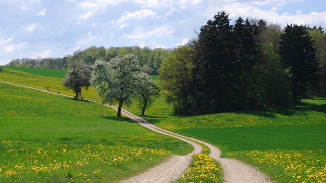Landscape wallpaper 9