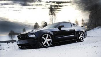 Mustang wallpaper 12
