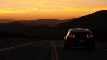 Mustang wallpaper 18