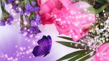 Pink wallpaper as background 34