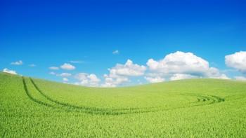 Windows XP wallpaper 25