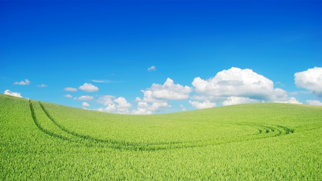 Windows XP wallpaper 25