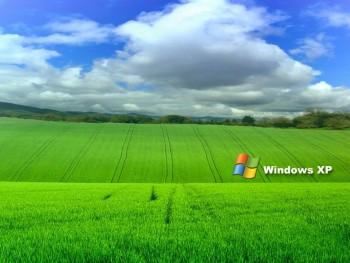 Windows XP wallpaper 37