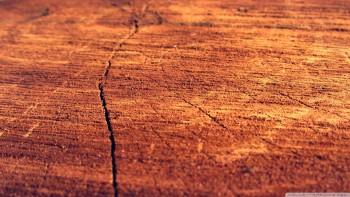 Wood Wallpaper Background 10