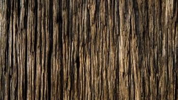Wood Wallpaper Background 32