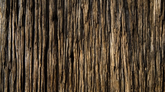 Wood Wallpaper Background 32