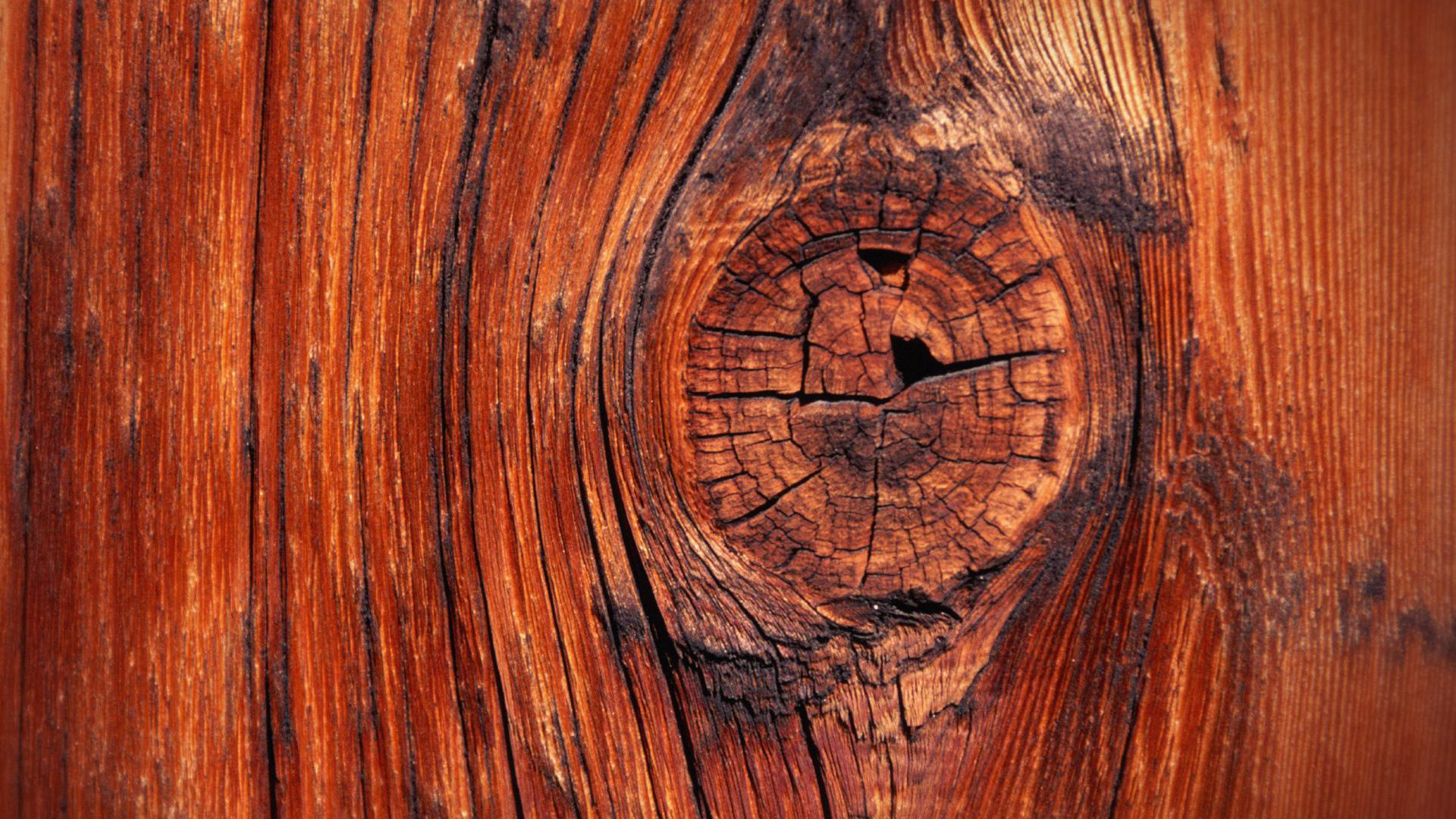 35 HD Wood Wallpapers/Backgrounds For