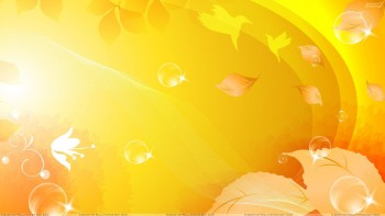 Yellow wallapaper 50