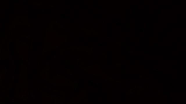 black wallpaper to set as background 10
