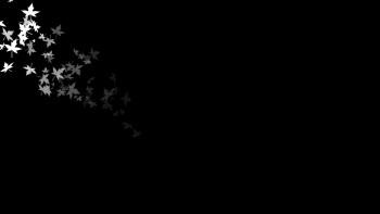 black wallpaper to set as background 25