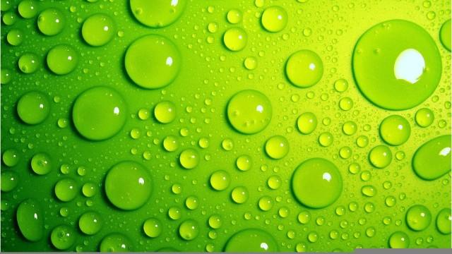 green wallpaper 564
