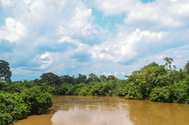 Contemplate The Rich Landscape Of Sierra Leone, This Beautiful Territory Of West Africa--13