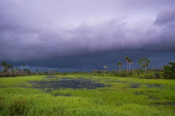 Contemplate The Rich Landscape Of Sierra Leone, This Beautiful Territory Of West Africa--16