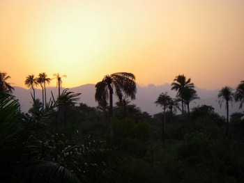 Contemplate The Rich Landscape Of Sierra Leone, This Beautiful Territory Of West Africa--18