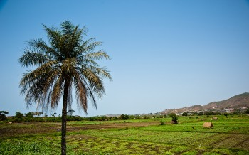 Contemplate The Rich Landscape Of Sierra Leone, This Beautiful Territory Of West Africa--19