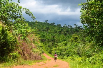 Contemplate The Rich Landscape Of Sierra Leone, This Beautiful Territory Of West Africa--20