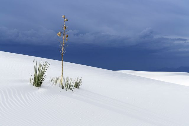 American White Sands Desert Is A Sublime Expanse That Should Not Exist--15