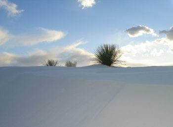 American White Sands Desert Is A Sublime Expanse That Should Not Exist--9