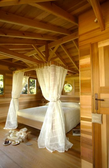 Blue Suit: A Beautiful Cabin Nestled In Trees In The Heart Of A Lavender Field--4