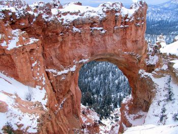 Bryce Canyon National Park: One Of Most Beautiful Wonders Of United States--7