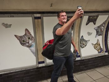 Farewell pubilicity Cat posters invade the London Underground 1 1
