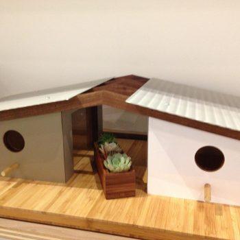 Beautiful Bird Homes 7