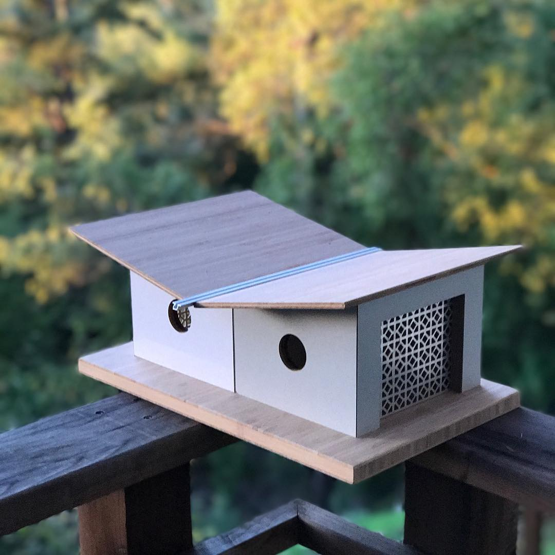 Beautiful Bird Homes 8