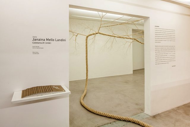 Janaina Mello Landini's Amazing Rope Artworks (gallery)--11