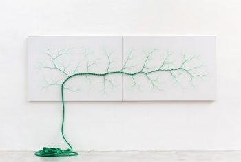 Janaina Mello Landini's Amazing Rope Artworks (gallery)--2