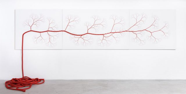 Janaina Mello Landini's Amazing Rope Artworks (gallery)--4