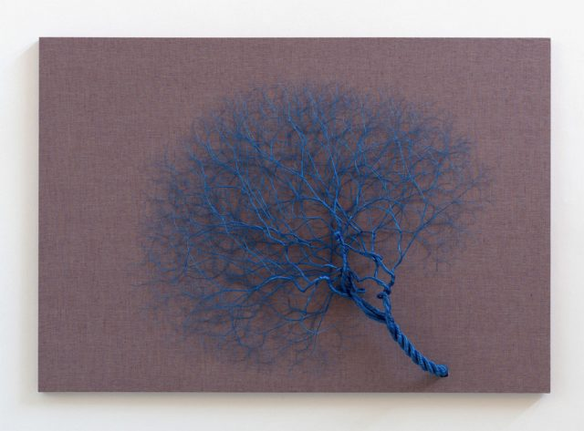 Janaina Mello Landini's Amazing Rope Artworks (gallery)--6