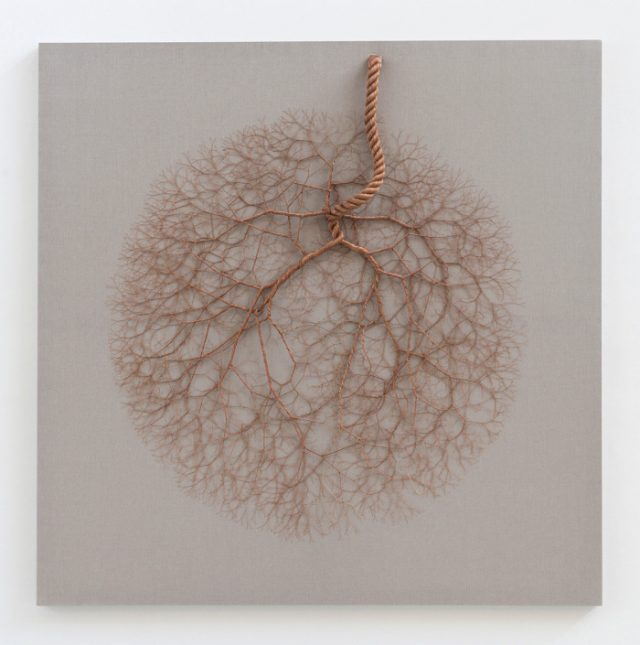 Janaina Mello Landini's Amazing Rope Artworks (gallery)-