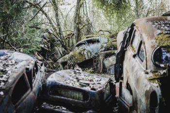 A Car Graveyard In Sweden