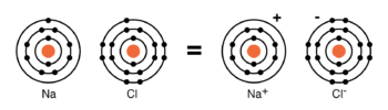 neutral sodium atom