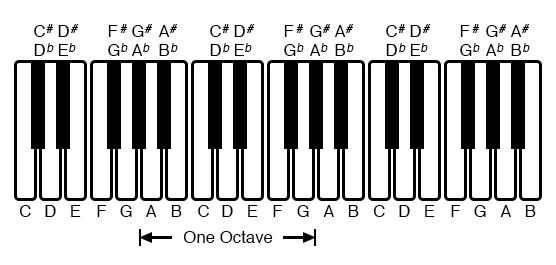 An octave is shown on a musical keyboard.