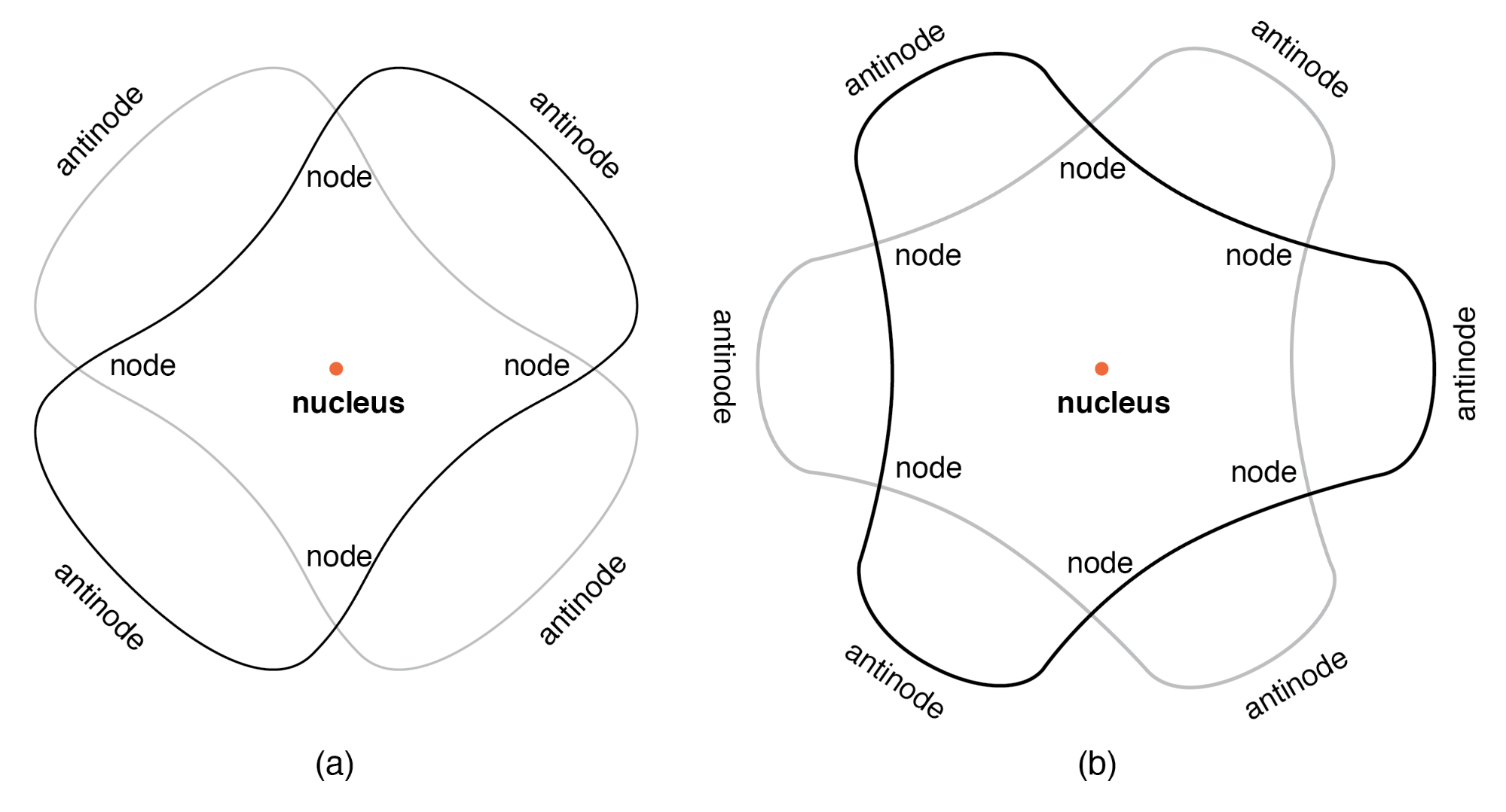 """""""Orbiting"""" electron as standing wave around the nucleus, (a) two cycles per orbit, (b) three cycles per orbit."""