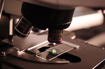 microscope arme 1